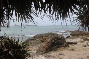 Coffs Coast BEACH